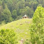 1hofgut Sternen Reisetraum Schwarzwald