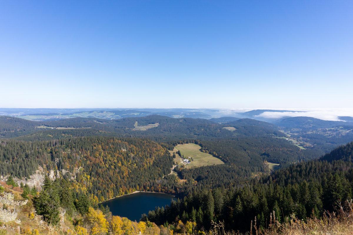 Der Schwarzwald - Blick vom Feldberg