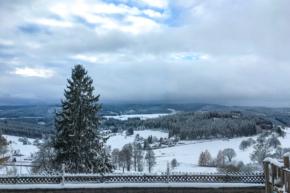 Der Schwarzwald im Winter