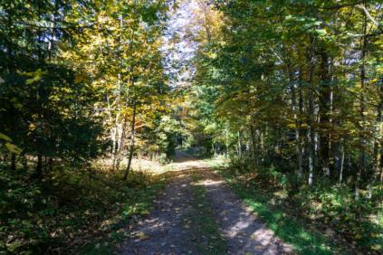 Wandern Im Südschwarzwald2