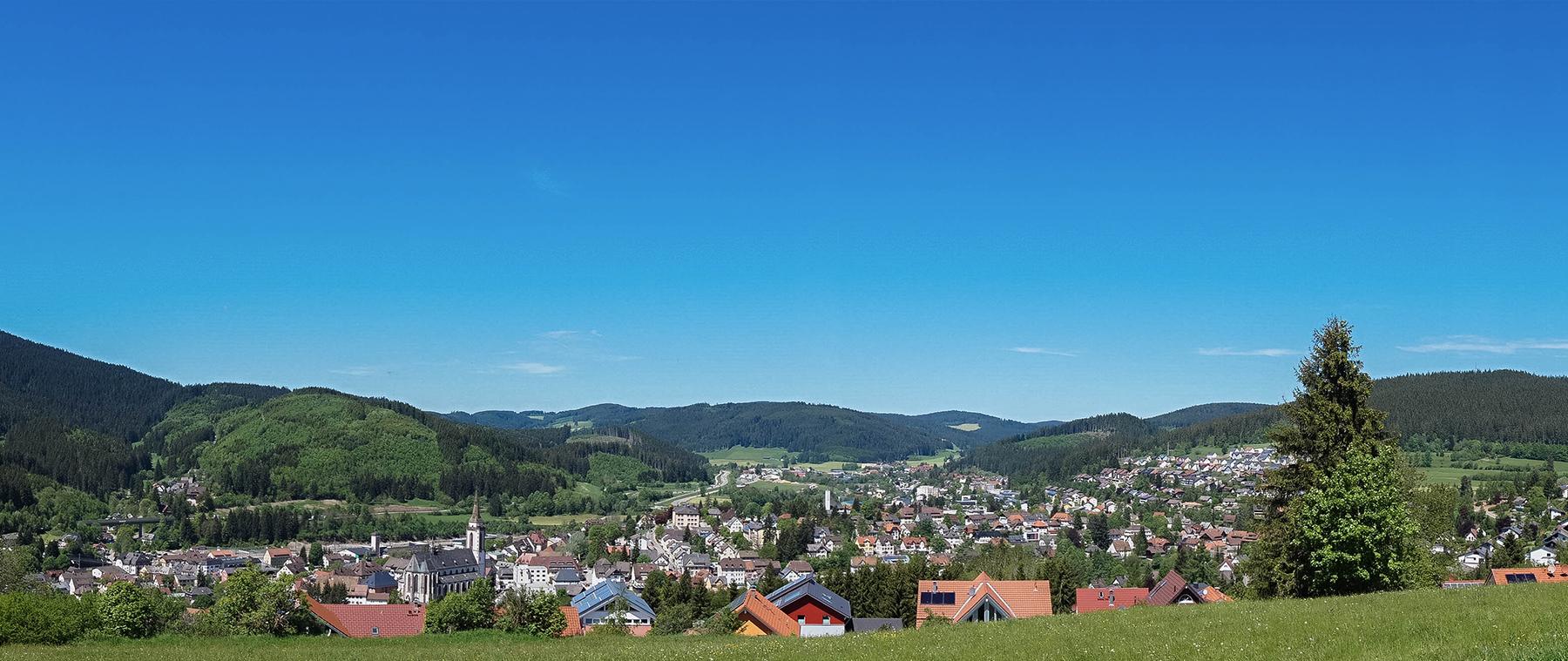 Reisetraum Schwarzwald - Blick auf Neustadt im Schwarzwald